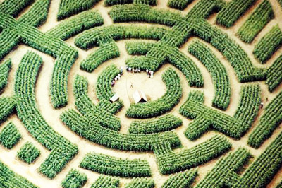 Labyrinthe Géant image