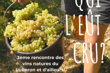 Qui l'eût cru?! Découvertes des vins natures. 27/07 aux Beaumettes image
