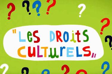Les droits culturels, oui les nôtres ! image